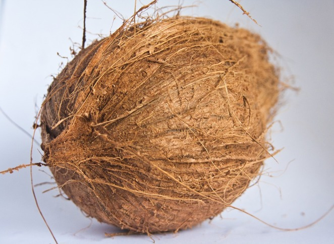 coconut-390056_960_720